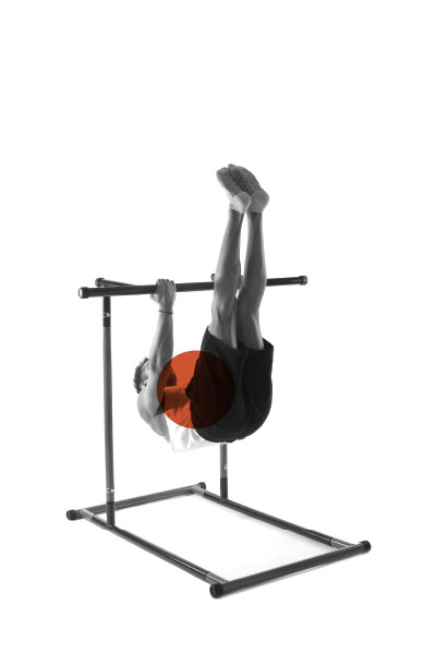 onextragym-pull-up-rack-exercise-15