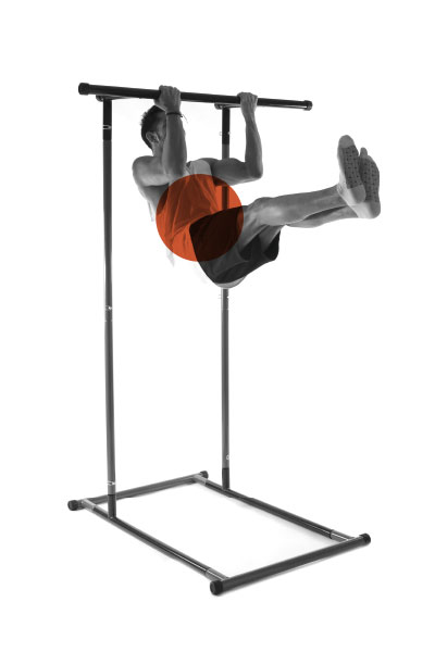 onextragym-pull-up-rack-exercise-4
