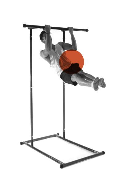 onextragym-pull-up-rack-exercise-6